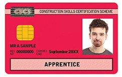 red apprentice cscs card