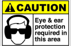 Protecting your Eyes and Ears at Work
